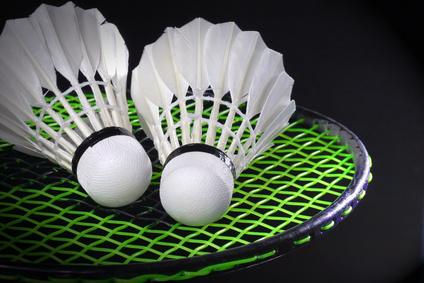 Vœux du président USL Badminton