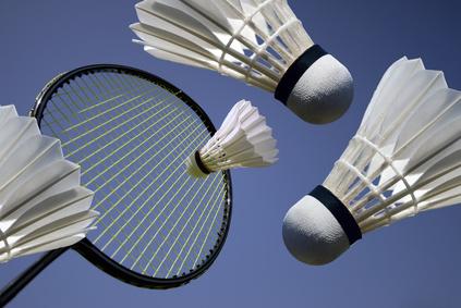 968a4da3068e2 Volant de badminton plume – SportiFull